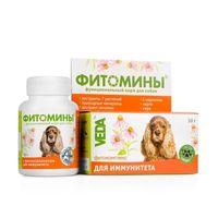 Фитомины для иммунитета д/собак 100таб